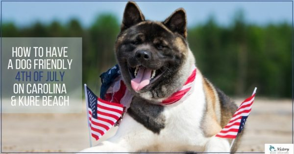 Bring your dog with you this 4th of July on Carolina and Kure Beach